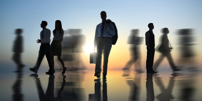 How To Start A New Risk Management Job
